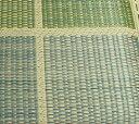 純国産 織込千鳥 い草座布団 『フブキ 5枚組』 グリーン 約55×55cm×5P【グリーン】