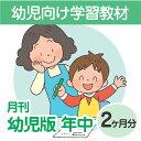 【おうちで勉強】家庭学習教材いちぶんのいち幼児版 レベル2(対象年齢4・5歳)2ヶ月分発送