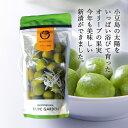 小豆島産オリーブ新漬 100g 製造直売 大量注文OK 【 小豆島産 限定 オリーブ園 小