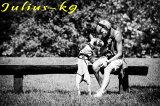 【送料無料】世界25カ国以上で愛されている機能性抜群ハーネス【Julius-K9】ユリウスケーナイン・IDCパワーハーネス Size0〜2 中・大型犬用サイズ