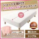 ショート丈 ボンネルコイルマットレスベッド 脚22cm シングルベッド シングルサイズ