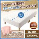 【送料無料】 ショート丈 ポケットコイルマットレスベッド 脚22cm セミシングルベッド