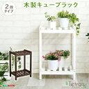 【送料無料】 木製キューブラック 2段【Tetras-テトラス-】