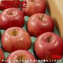 【ポイント5倍】りんご 10kg 訳あり 送料無料 青森県産 40玉前後 令和2年度 葉取らずりんご