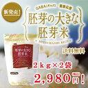 ≪送料無料≫胚芽の大きな胚芽米2kg×2袋 胚芽が2倍で栄養価の高いお米です。
