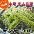 海ぶどう(500g)【送料無料】