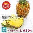 パイナップル【送料無料】もぎたて!ピーチパイン 沖縄宮古島より直送!!【フルーツ
