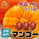 朝獲りもぎたて!沖縄県宮古島産!秀品マンゴー1kg(2〜3玉)マンゴーの収穫量日本一