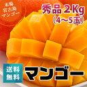 朝獲りもぎたて!沖縄県宮古島産!秀品マンゴー2kg(4〜5玉)マンゴーの収穫量日本一