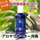 月桃アロマウォーター100ml<自然栽培農法100%ピュア芳香蒸留水>