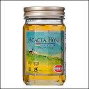 ハンガリー産アカシア蜂蜜450g 純粋蜂蜜