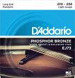 【D'Addario (ダダリオ)】マンドリン弦 EJ73 (EJ-73)