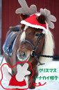 【11/10 新入荷】【Horze(ホーズ)】 ポニー、馬用トナカイ帽子・キャップ//【レディース】【メンズ】