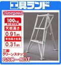 (代引不可 直送品) ハセガワ 園芸用三脚脚立 グリーンステップ (3尺) GSC-90
