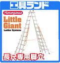 (代引不可 直送品) ハセガワ 長尺専用脚立 LG-10110