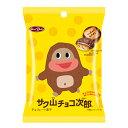 150円 サク山チョコ次郎 小袋タイプ [1箱 12袋入]【...
