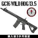 g&g電動ガンGC16WildHog13.5G&GARMAMENTエアソフトガン【3か月保証】