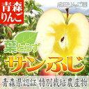 青森りんご 特別栽培(減農薬/化学肥料不使用) 葉とらず サ...