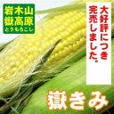 【販売終了しました。】【送料無料】日本一甘いとうもろこし 青森・岩木山の嶽きみ 2L 20本入 農園より産地直送【農産物】