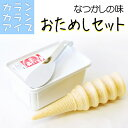 アイスクリーム 種類 通販