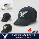 �A�����J���C�[�O��(American Eagle)