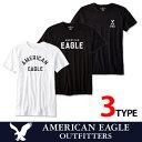 なんとエントリーで■ポイント5倍■7/21(土)1:59までアメリカンイーグル 半袖 Tシャツ USAモデル メンズ AE American Eagle ae1958 ブラック ゆうパケット送料無料