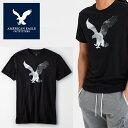 なんと【ポイント5倍!!】9/24(火)1:59までアメリカンイーグル 半袖 Tシャツ USAモデル メンズ AE American Eagle 正規品 ae2015 ブラック
