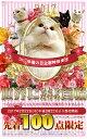 2017年猫の日記念特別受注 世界にひとつだけの首輪【先着100点限定】