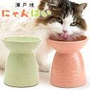 ペッツルート 瀬戸焼 にゃんはい 猫用食器