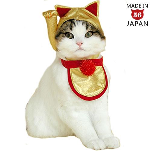 【開運招福!招き猫セット】まさしく招き猫!これは縁起がいいのです。猫ちゃんの変身セット決定版!