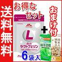森永ラクトフェリン【送料無料】90粒入×6袋セット(1