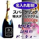 スパークリングワイン ダブルマグナム ヘンケル・トロッケン サプライズギフト プレゼント パーティー