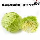 【兵庫県/大阪府産】キャベツ 1個 約1.5kg【野菜詰め合...