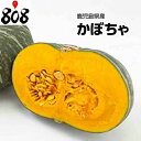 【鹿児島県産】南瓜 1カット 約700g【野菜詰め合わせセッ...