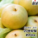 【送料無料】【あす楽】【西日本産】訳あり 20世紀梨 大きさ...