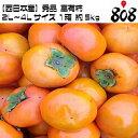 【送料無料】【西日本産】秀品 富有柿 2...