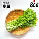 【兵庫県産】水菜 1束 約150g【野菜詰め合わせセットと同梱で送料無料】【送料別】
