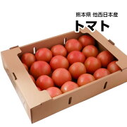 【西日本産】とってもあま〜い トマト 1箱 約4kg【常温便送料無料】(北海道沖縄別途送料加算)とまと/トマトジュース/トマトケチャップ/トマトソース/トマトリコピン/トマトダイエット/業務用/加工用/生食用