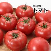 【西日本産】超ビッグサイズ トマト 1箱 3Lサイズ 12〜14玉入【送料別】とまと/トマトジュース/トマトケチャップ/トマトソース/トマトリコピン/トマトダイエット/業務用/加工用/生食用