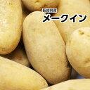 【長崎県産】新メークイン Lサイズ 約5kg【常温便送料無料...