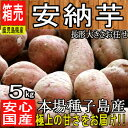 【鹿児島県 種子島産】あま〜い安納芋 約5kg【ちょっと訳あ...