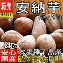 【鹿児島県 種子島産】あま〜い安納芋3kg 安納さげ芋【長 ...