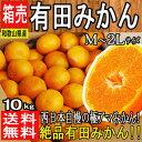 【和歌山県産】絶品 有田みかん M~2Lサイズ 約10kg【...