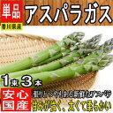 【香川県産】グリーンアスパラ アスパラガス 1束3本約100g【野菜詰め合わせセットと同梱で送料無料