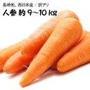 【西日本産】訳あり 人参 大きさおまかせ 約9〜10kg【常...