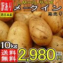 【北海道、他 西日本産】メークイン 1箱 LM〜2Lサイズ 約10kg入【常温便送料無料