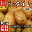【北海道、他 西日本産】メークイン 1箱 LM〜2Lサイズ ...