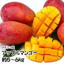 【メキシコ産】 アップルマンゴー 大きさおまかせ 10〜16玉 風袋込 約5〜6kg【チルド