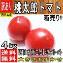 【西日本産】絶品 桃太郎 トマト 大きさおまかせ 訳あり 約4kg【ゆうパック送料無料】(東北のお客