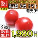 【西日本産】絶品 桃太郎 八代 トマト 大きさおまかせ 訳あり 約4kg【クール便